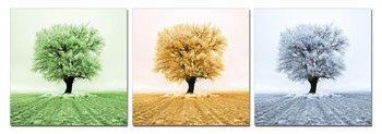 Autumn treetop Schilderij