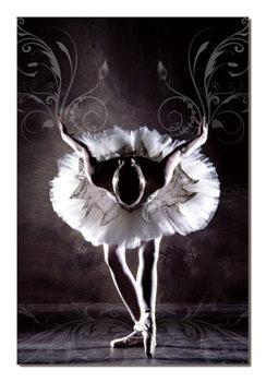 Black & White Ballerina Schilderij