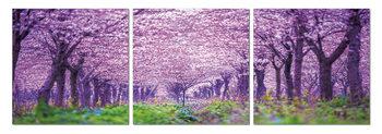 Blossoming orchard Schilderij