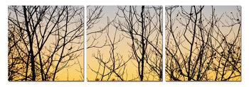 Bushes at sunrise Schilderij