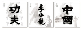 China Signs - Kung Fu. Bruce Lee, China Schilderij