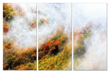 Colorful landscape Schilderij