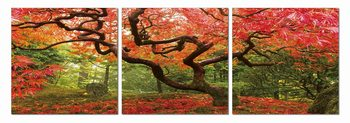 Colorful Park Schilderij