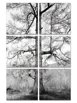 Gray tree Schilderij