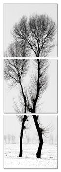 Modern design - black and white tree Schilderij
