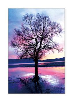 Pink Tree Schilderij