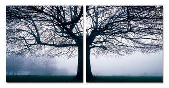 Silhouette of tree in fog Schilderij