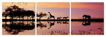 Sunrise in Africa Schilderij