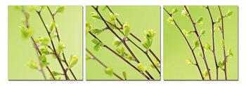 Twigs on green canvas Schilderij