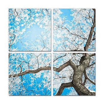 White treetop Schilderij