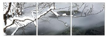 Winter Snapshot Schilderij