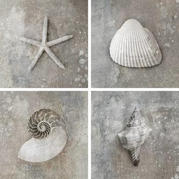 Skleněný Obraz Moře - Bílá koláž