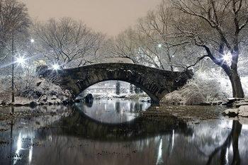 Skleněný Obraz New York - Most v Central parku