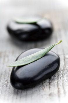 Skleněný Obraz Zen - Na dřevě