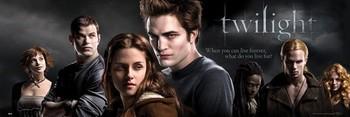 TWILIGHT - movie Smale plakat