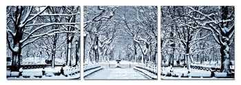 Mодерна картина Snowy park