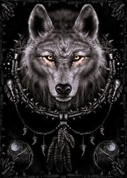 Spiral - wolf dreams - плакат (poster)