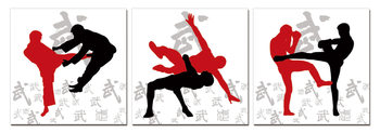 Mодерна картина Sport - Kickbox