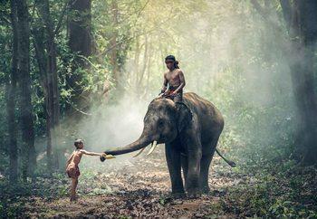 Jungle Friends Staklena slika