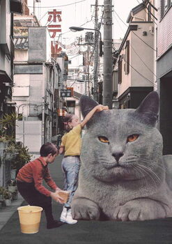 Stampa su Tela Children washing a giant Cat in Tokyo Streets