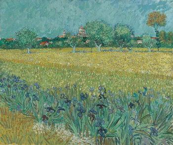 Stampa su Tela Field with Flowers near Arles, 1888