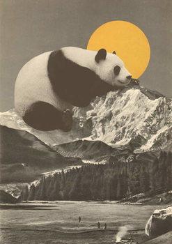 Stampa su Tela Panda's Nap into Mountains