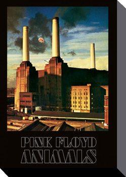 Stampa su Tela Pink Floyd - Animals