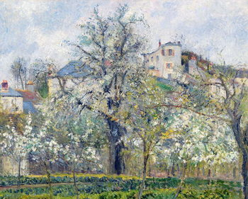 Stampa su Tela The Vegetable Garden with Trees in Blossom, Spring, Pontoise