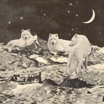 Stampa su Tela Three Giant White Wolves on Mountains