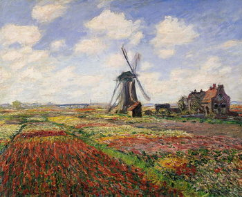 Stampa su Tela Tulip Fields with the Rijnsburg Windmill, 1886