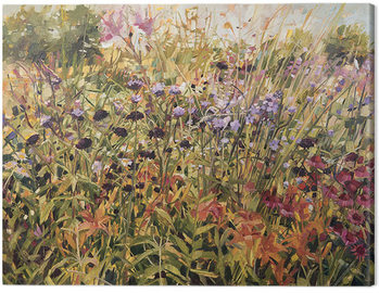 Stampa su Tela Anne-Marie Butlin - Field with Lillies