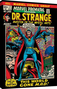 Stampa su Tela  Marvel Comics - Dr Strange - World Gone Mad