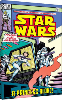 Stampa su Tela Star Wars - A Princess Alone