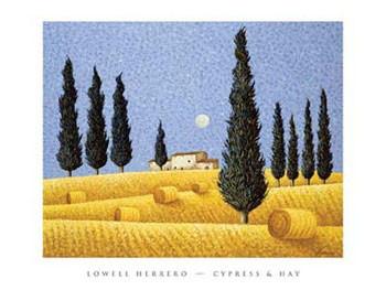 CYPRESS & HAY - Stampe d'arte