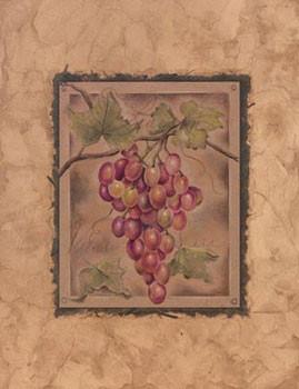 Raisin Fructus - Stampe d'arte