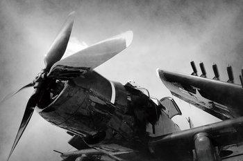 Szklany obraz Plane - Black and White Screw