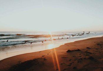 Szklany obraz Sunset Flight