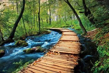 Szklany obraz Wooden Path