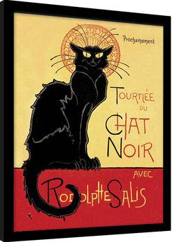 Poster encadré Chat Noir