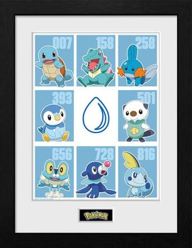 Poster encadré Pokemon - First Partner Water