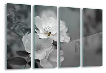 Tableau sur verre  Bee Blossom