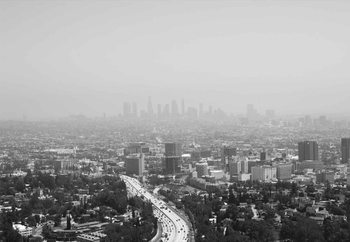 Tableau sur verre LA
