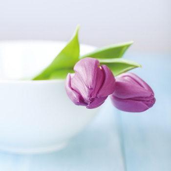Tableau sur verre Purple Tulipans in the Bowl