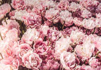 Tableau sur verre Sea Of Flowers