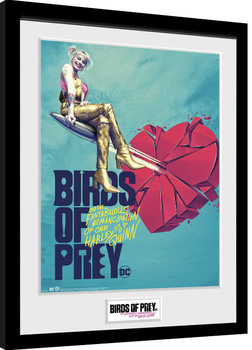 Birds Of Prey: et la fantabuleuse histoire de Harley Quinn - One Sheet Bullet Poster encadré