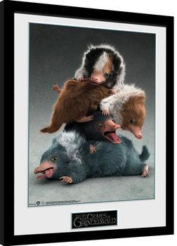 Les Animaux fantastiques: Les Crimes de Grindelwald - Nifflers Poster encadré