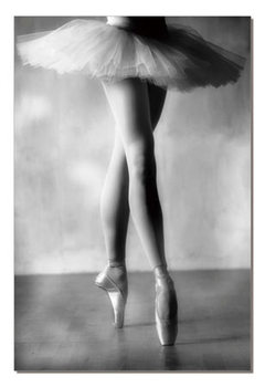 Ballerina Tableau Multi-Toiles