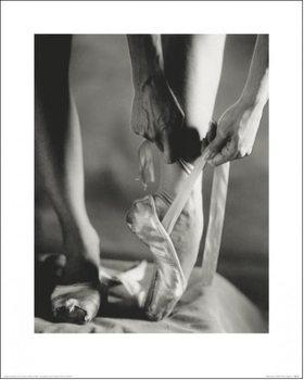 Ballet - Ballet Shoes Reproduction de Tableau