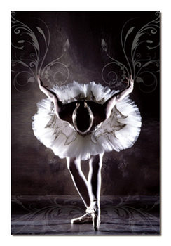 Black & White Ballerina Tableau Multi-Toiles