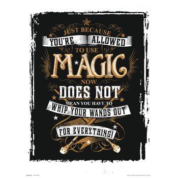Harry Potter - Magic Reproduction de Tableau